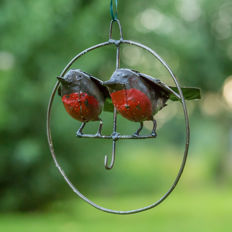 Two birds in a metal circle/ ring.