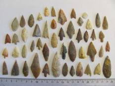 50 x Neolithic arrowheads - 13/50 mm (50)