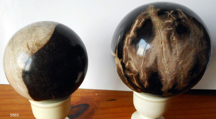 2 large spheres of petrified wood - 110 and 80 mm - 2110 gram (2)
