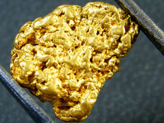 Gold nugget - 9.34 x 6.34 x 3.15 mm - 6.50 ct