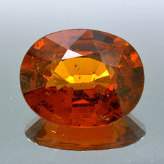 Orange-Red spessartine garnet – 3.11 ct. – No reserve price.