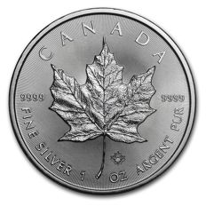 Kanada - 5 Dollars 2017 - Maple Leaf - 1 oz 999 Silber / Silbermünze