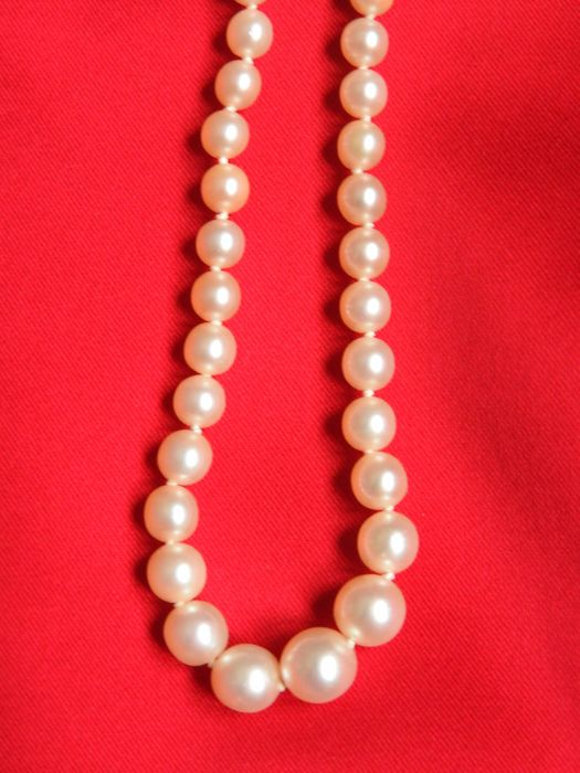 Freshwater cultured pearls necklace with 18 kt gold clasp –Length: 42.5 cm