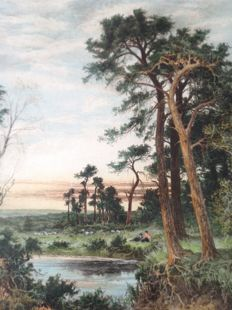 Camille Fonce  (1867- unknown) - the Surrey Pine Trees
