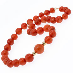 18 kt / 750 yellow gold — Necklace with certified natural coral —  Length: 57 cm **No reserve**