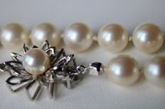 Ivory-white genuine sea/salty pearls with very nice lustre aprox. Ø 7.5-7,9mm. White gold 14kt. floral clasp with pearl.