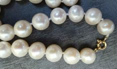 Gold (18 kt) – Necklace of large (14 to 11 mm) fresh water cultured pearls – Length: 47 mm