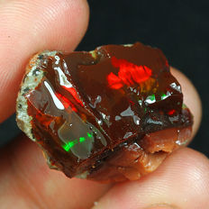 Natural Ethiopian Black Chocolate Opal Facet Rough Specimen - 27x19x15mm - 34,9 ct