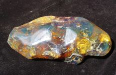 Natural, polished green Mexican Amber - 12 x 5.5 x 4.5 cm - 147 gm