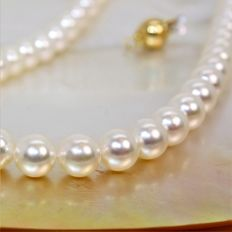 Necklace of round cultured Japanese Akoya pearls, Ø 7 x 7.5 mm – 750 yellow gold clasp