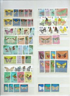 Thematic - Collection of butterflies on stock cards