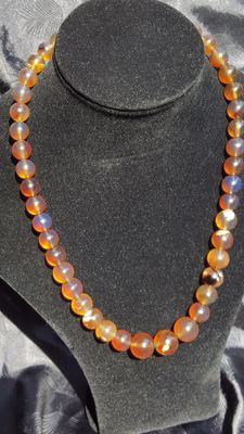 Sumatra Amber fluorescent beaded necklace, untreated, weight 70 grams