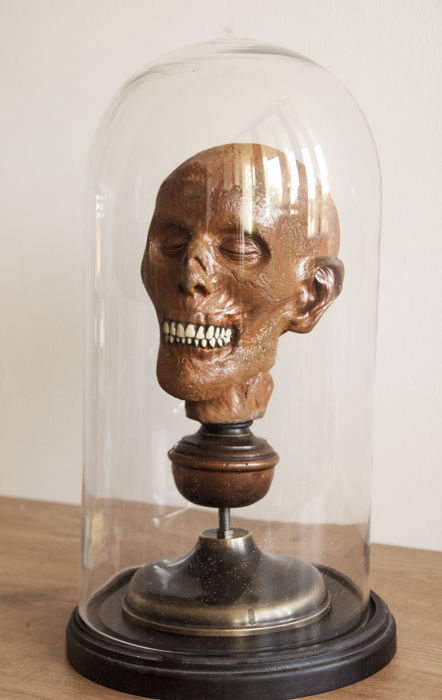 Mummy head. Reproduction