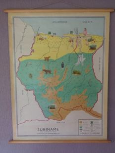 Beautiful map / school poster of Suriname, of Bakker and Rusch with its wild animals, Hummingbirds, Indians etc.