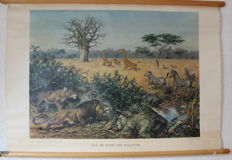 Two school posters - On the edge of the Kalahari and In the boonies