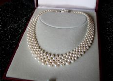 Braided five-row interlace Akoya necklace/choker 3.4-7.3 mm and a gold clasp set with pearls