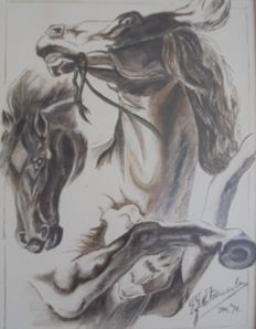 Very powerful watercolour of two Mustangs -January 1978