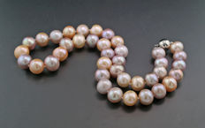 Natural coloured multi-colour cultivated pearl necklace, 11 to 12 mm, 585 white gold --- No reserve