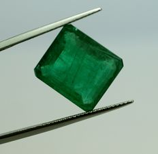 Emerald - green - 9,08 ct