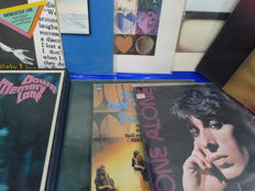 Lot Of 27 Albums LP from Different Artist s.a. - Elvis, Rolling Stones, Bee Gees, Dire Straits and more