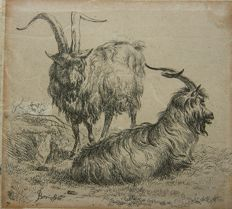 Nicolaes Berchem (1620-1683) - 2 bucks - 18th century