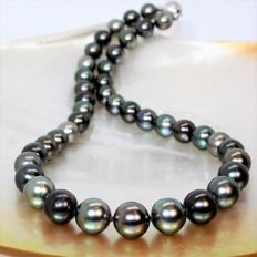 Necklace of perfectly round cultured Tahitian pearls, Ø 9 -11.30 mm # No Reserve Price #