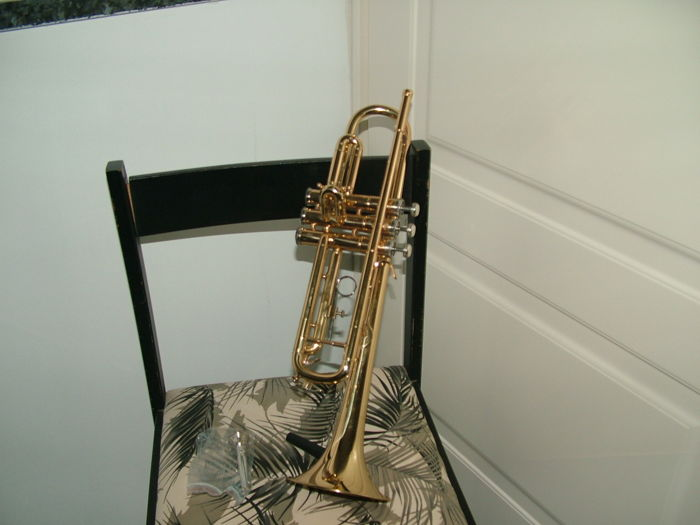 Compass Trumpet - as new - never used - complete with the case