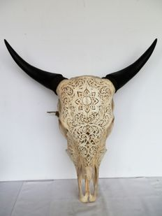 Authentic hand-carved cow skull - Bos Taurus sp. - 61 x 55 cm.