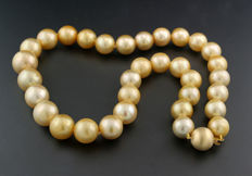 Classy South Sea pearl necklace, gold South Sea pearls approx. 11.7 to 15.8 mm, 585 yellow gold, no reserve!