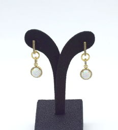 14 carat yellow gold a pair of earring with opal stone