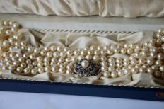 3- row pearl necklace with sea/salt pearls and 750 Goldsmith lock set with pearl and 16 blue Sapphires approx. 0,32Ct. Low reserve price.