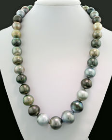 Multicoloured Tahitian pearl and South Sea pearl necklace 11 to 16 mm, 585 white gold ---no reserve price!--