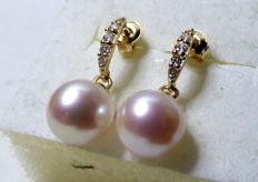 14 kt earrings with freshwater pearls and zirconia
