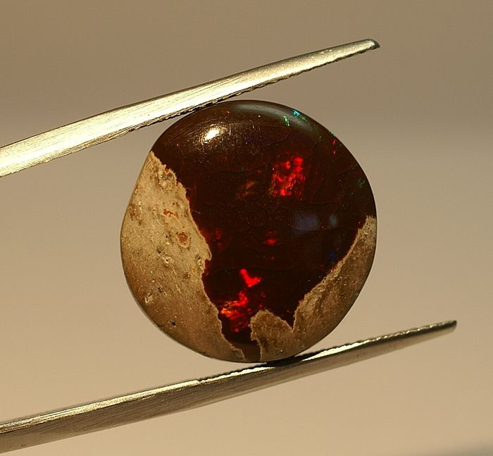 Opal , brown  with play of colour - 10,10ct