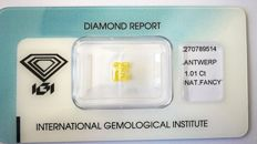 Rare Natural fancy Intense Yellow diamond   1.01 ct  with IGI certificate***No minimum price***