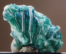 'Gemmy' (Paraiba Colour) Tourmaline Crystals Cluster with Cleavelandite - 35 x 17 x 24 mm - 71.5 ct