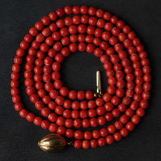 Necklace/strand of approx. 178 precious corals with 14 kt gold clasp, necklace length: ± 92 cm.