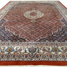 Indo Bidjar – India – 252 x 200 cm – full and thick, oriental carpet – second half last century