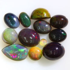Lot of natural Welo Opal, vibrant play of colours - Untreated - 11 cts (11)