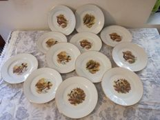 Limoges porcelain set, 12 plates servings - bird decors