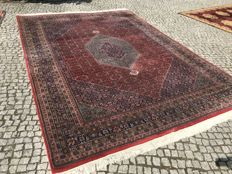 Indo-Bidjar Perfect Orient Rug 350x250cm -hand knotted - Looks like kaschmir