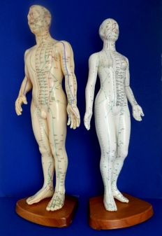 2 rubber acupuncture dolls: male and female