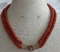 Necklace of a double cord red coral with a gold clasp +/- 1860