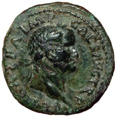 Roman Empire - Galba (68-69 AD) - Æ As (28mm; 8,96g.) - Rome mint, struck June-August 68 AD - Head of Galba / Aquila on thunderbolt - RIC I, 302 - Scarce