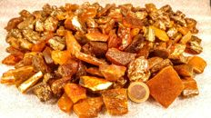 Huge Lot of  Raw Baltic Amber - 1 kg.