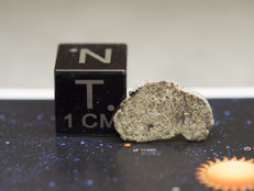 NWA 7397 meteorite - Martian shergottite - 1.4 x 0.7 cm slice in collection box - 0.32 gm