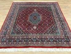 Magnificent Indo BIDJAR - with certificate of authenticity -approx. 203 x 197 cm - clean and in very good condition