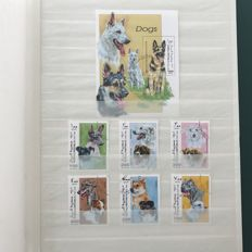 Thematic - dogs, collection with 100 different emissions, including, among others, 41 blocks