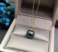18 kt Yellow Gold Pendant with Tahitian Cultured Pearl of 10-11 mm - Length with ring: 13 mm