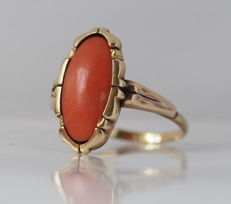 Yellow gold ring with 1 oval salmon rose blood coral.